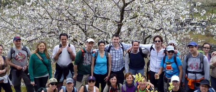 La belleza efímera del cerezo en Flor, Valle del Jerte